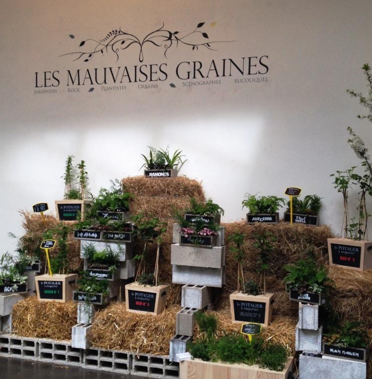 LES MAUVAISES GRAINES | 75017 Paysagiste