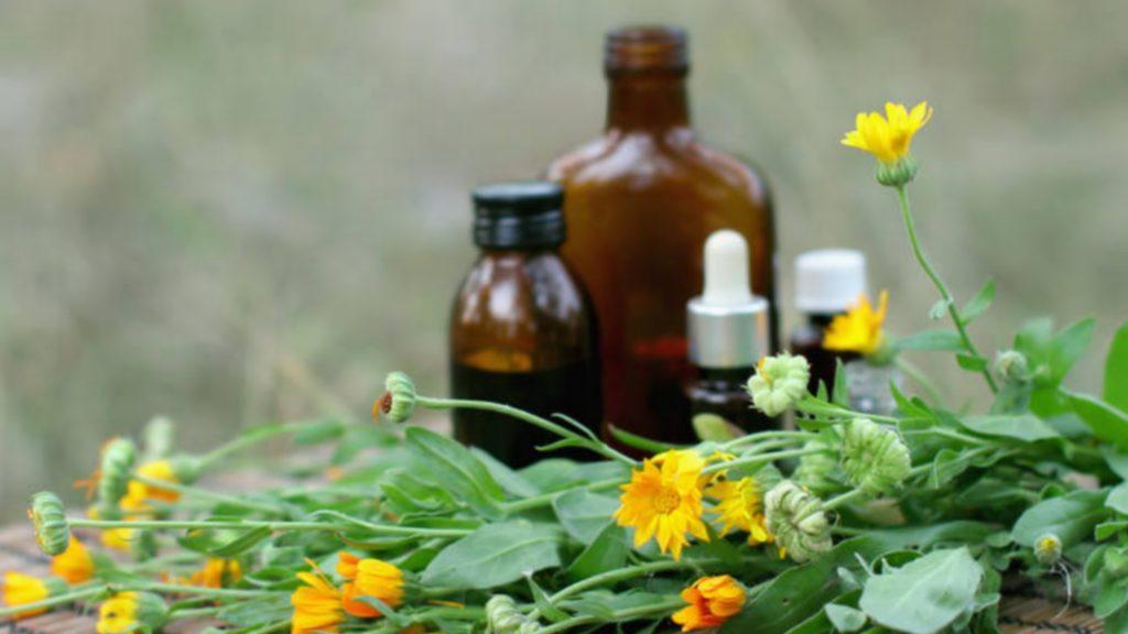 #MCBAfrance | Le diplôme d'herboriste bientôt reconnu en France